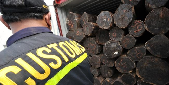 Timber trade required to exercise due diligence